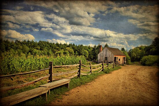 Picturesque Countryside  by Evelina Kremsdorf