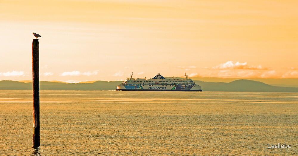 British Columbia Ferries by Lesliebc