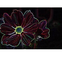 neon red Photographic Print