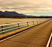 The bridge over the Haast River by Duncan Cunningham