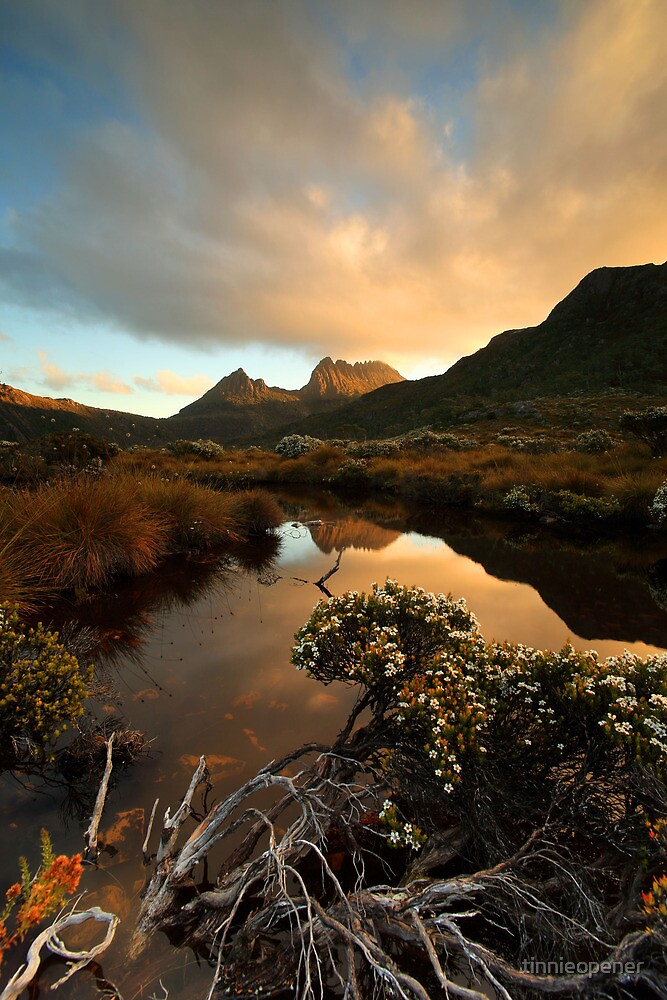 Cradle Mountain WHA by tinnieopener