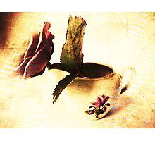 Vintage Rose & Old Vase. Photographic Print