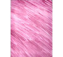 PINK ON CANVAS Photographic Print