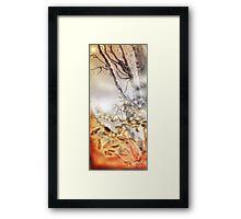 Misty Dream, Water of Leith Riverside, Edinburgh Framed Print