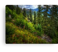 Many Looks Of Nature Canvas Print