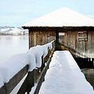 Lake Kochelsee - Winter 2013 by MelliCaster