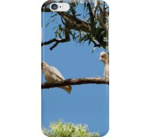 'HEY! YOURE FACING THE WRONG WAY!' Long Billed Corella's.  iPhone Case/Skin