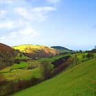 What a view - Bwlchyddar in Powys by Jacqueline Longhurst