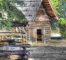 A Settlers Shed by LarryB007