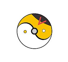 Level Ball Yin and Yang by TailsP