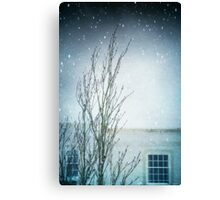 Cocooned Canvas Print