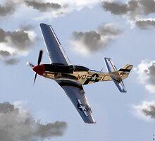 P-51 Mustang by shutterrudder
