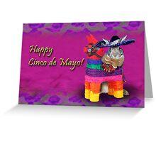 Cinco de Mayo Bunny Rabbit Greeting Card