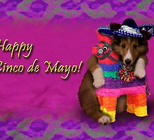 Cinco de Mayo Shetland Sheepdog by jkartlife