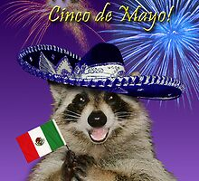 Cinco de Mayo Raccoon by jkartlife