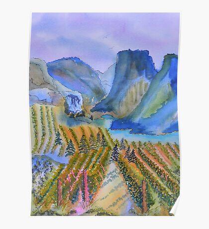 Okanagan Vineyard 2 Poster