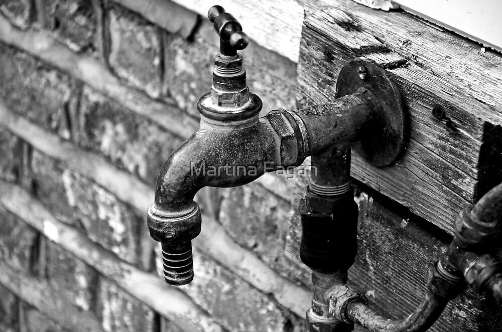 Garden Tap by Martina Fagan