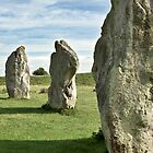 Avebury stone circle by Martyn Franklin
