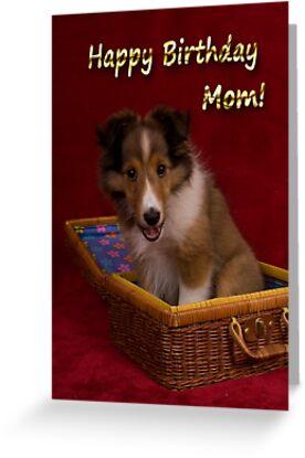 Birthday Sheltie Puppy by jkartlife