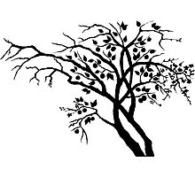 Tree of seasons Photographic Print