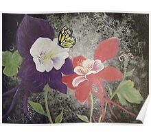 columbines and monarch butterfly  Poster