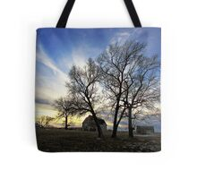 Whispers of the Past Tote Bag