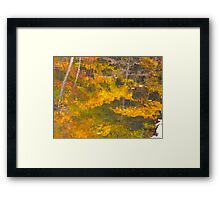 Dipping the brush Framed Print