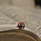 Book bug by vigor