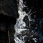 Trickle by kgallant
