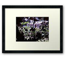 Looking Through a Fallen Leaf Framed Print