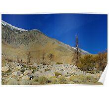 High Sierra Nevada valley Poster