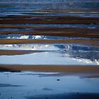 Tides Out at Harrison Lake  by Sheri Bawtinheimer