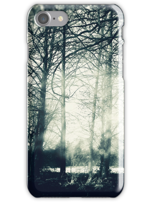 Faerie Wood by Sybille Sterk