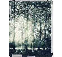Faerie Wood iPad Case/Skin