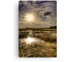 Everglades Afternoon Canvas Print