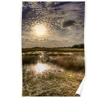 Everglades Afternoon Poster
