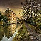 Winter along the Rochdale Canal  by Irene  Burdell