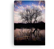 Sunset on the Okavango River Tree Canvas Print