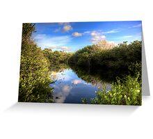 Everglades Pond Greeting Card