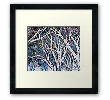 'ILLUMINATED TREES'  Framed Print