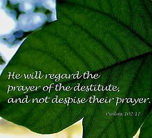 He Will Regard the Prayer of the Destitute by aprilann