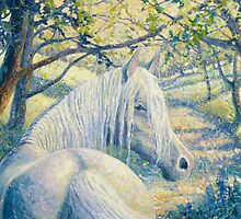 bluebell wood horse by Gill Bustamante