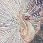white peacock by Gill Bustamante