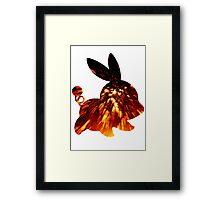 Tepig used Incinerate Framed Print