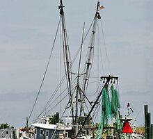 Chincoteague Trawler by Monnie Ryan