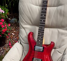 PRS SE22 by bluesbird