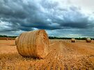 Bales Before The Storm by Colin  Williams Photography