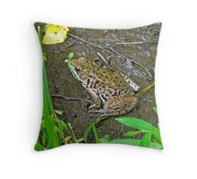 American Bullfrog - Rana catesbeiana Throw Pillow