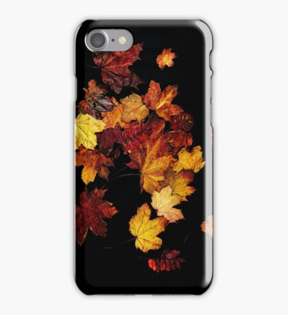 Autumn Colour iPhone Case/Skin