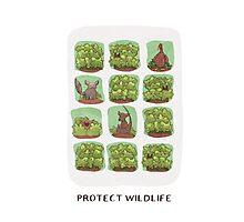 Protect Wildlife Photographic Print